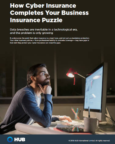 Cover Image Cyber Risk Supplement